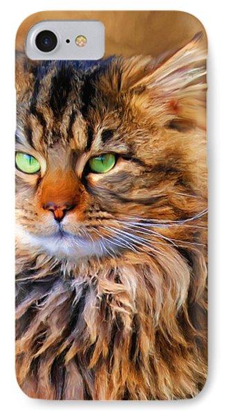 Maine Coon Cat Phone Case by Jai Johnson