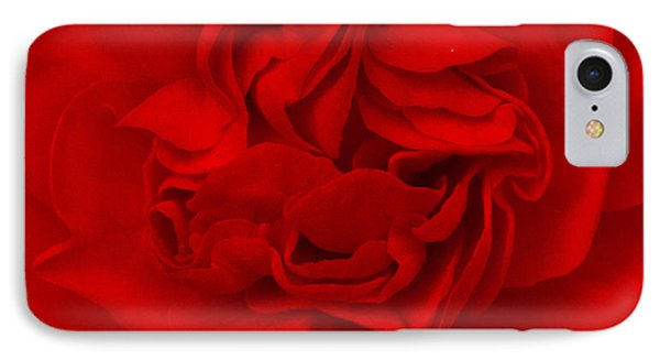 Majestic Begonia  IPhone Case by Lynn Hughes