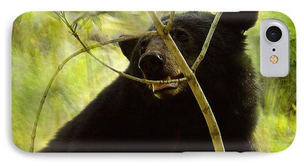 Majestic Black Bear IPhone Case by TnBackroadsPhotos