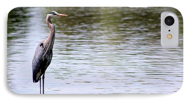 Majestic Great Blue Heron IPhone Case
