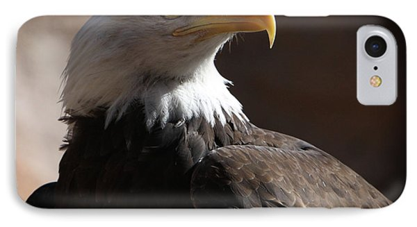 Majestic Eagle IPhone Case by Marie Leslie