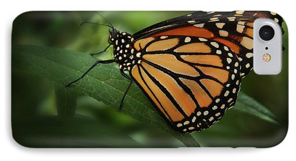 Majestic Monarch IPhone Case by Marie Leslie