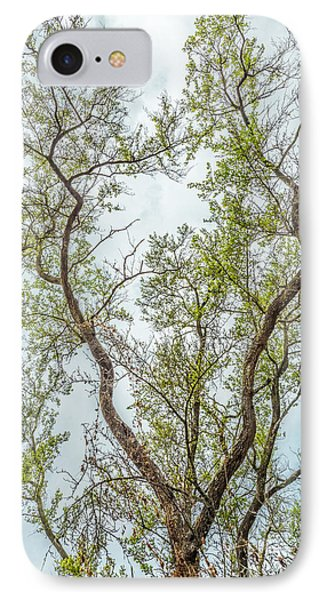 IPhone Case featuring the photograph Majestic Mountain Mahogany by Alexander Kunz