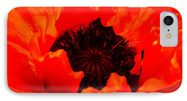 IPhone Case featuring the photograph Majestic Poppy by Baggieoldboy