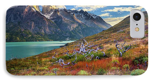 Majestic Torres Del Paine IPhone Case by Inge Johnsson