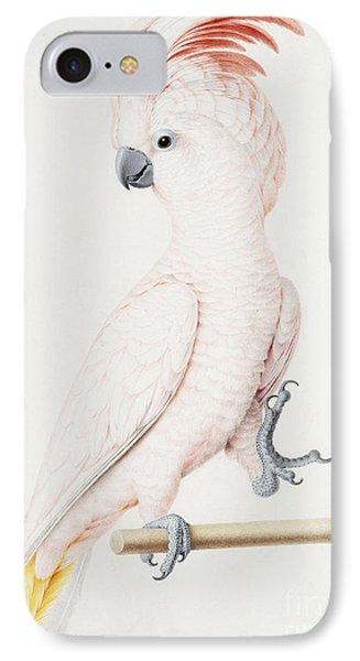 Major Mitchell's Cockatoo IPhone Case by Nicolas Robert