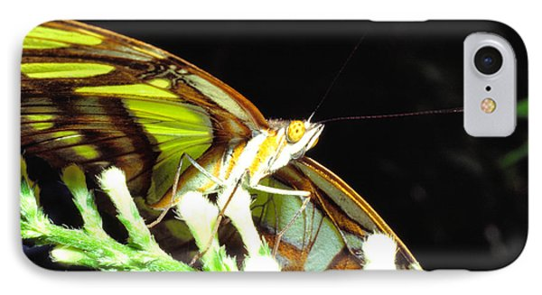 Malachite Butterfly Phone Case by Thomas R Fletcher