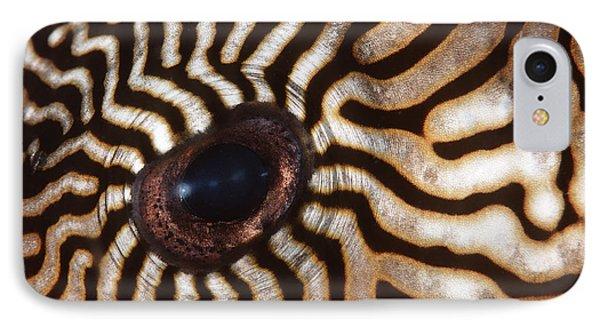 Malaysia Pufferish Eye Phone Case by Ed Robinson - Printscapes