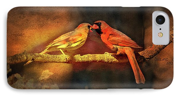 Male And Female Cardinal IPhone Case