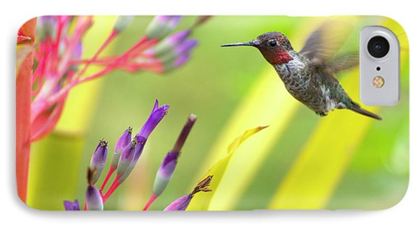 Male Anna's Hummingbird Phone Case by Mike Herdering