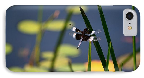 IPhone Case featuring the photograph Male Broad-bodied Chaser by Brenda Bostic