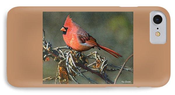 Male Cardinal IPhone Case by Ken Everett