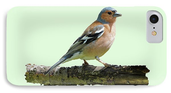 Male Chaffinch, Green Background IPhone Case by Paul Gulliver