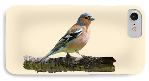 Male Chaffinch, Transparent Background IPhone Case by Paul Gulliver