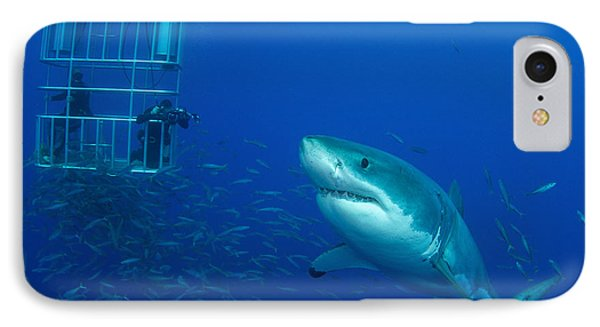 Male Great White Shark And Divers Phone Case by Todd Winner
