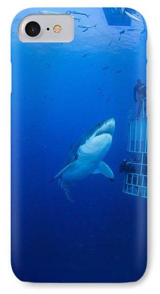Reef Shark iPhone 7 Case - Male Great White With Cage, Guadalupe by Todd Winner