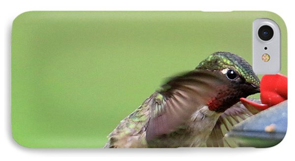 Male Hummer At Feeder IPhone Case
