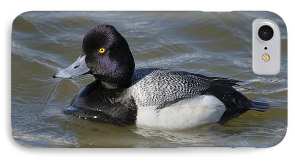IPhone Case featuring the photograph Male Lesser Scaup On The Water by Bradford Martin