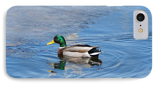 IPhone Case featuring the photograph Male Mallard Duck by Michael Peychich