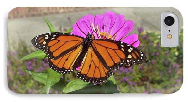 Male Monarch  IPhone Case