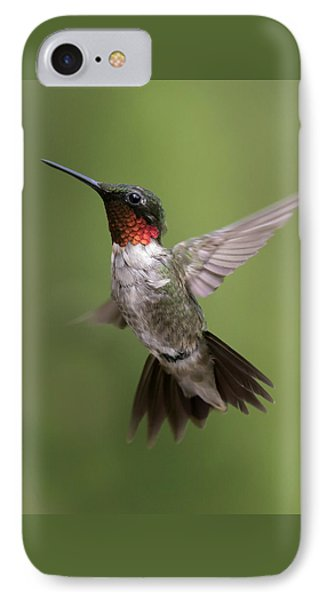 Male Ruby Throated Hummingbird IPhone Case by David Lester