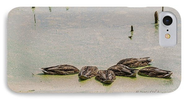 IPhone Case featuring the photograph Mallard Fine Dining by Edward Peterson