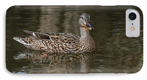 IPhone Case featuring the photograph Mallard Hen by Elaine Malott