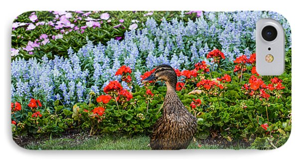 Mallard In The Garden IPhone Case by Zina Stromberg