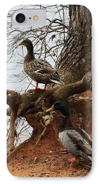IPhone Case featuring the photograph Mallard by Kim Henderson