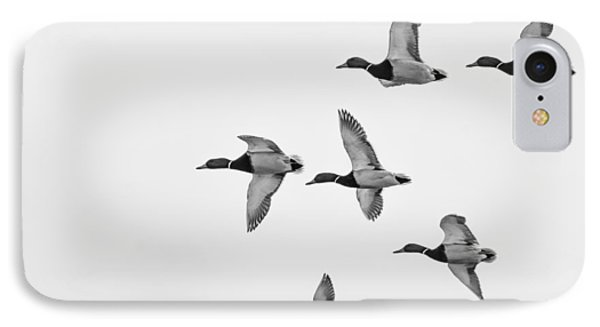 IPhone Case featuring the photograph Mallards by Dan Traun