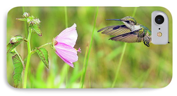 Mallow Hummer IPhone Case by Gary Holmes