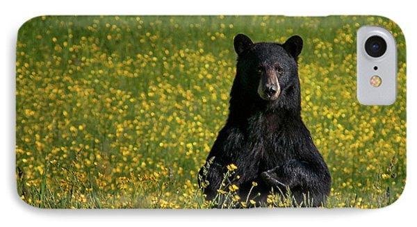 Mama Bear IPhone Case by Darylann Leonard Photography