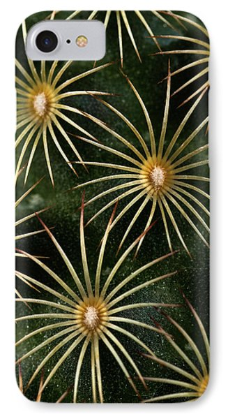 IPhone Case featuring the photograph mammillaria elongata Cactus  by Catherine Lau