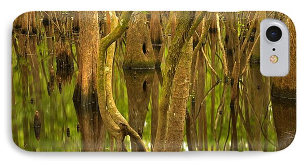 Manatee Springs Cypress Reflections IPhone Case by Adam Jewell