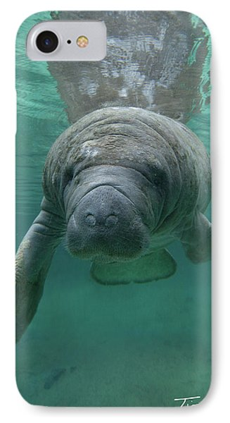 Manatee IPhone Case by Tim Fitzharris