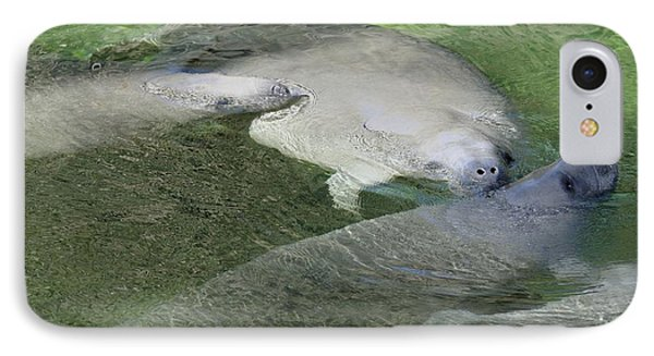 IPhone Case featuring the photograph Manatees At Blue Springs by Bradford Martin