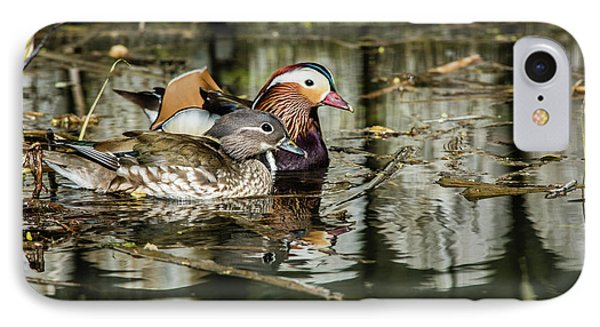 Mandarin Ducks The Couple IPhone Case by Torbjorn Swenelius