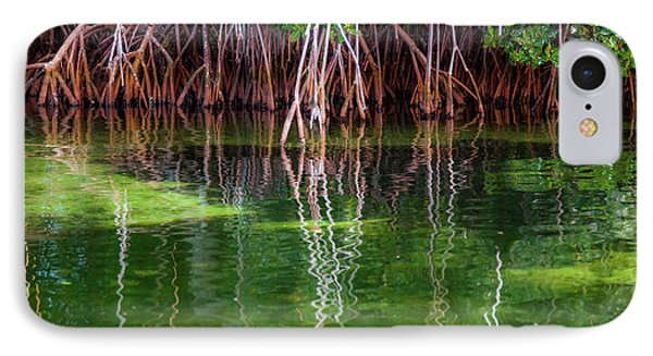 Mangrove Reflections IPhone Case