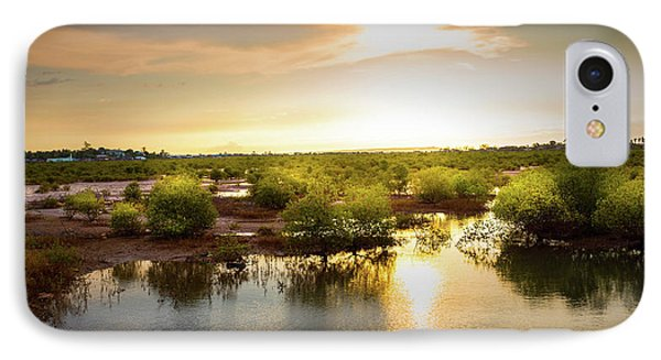 Mangroves Forest  IPhone Case by Louloua Asgaraly