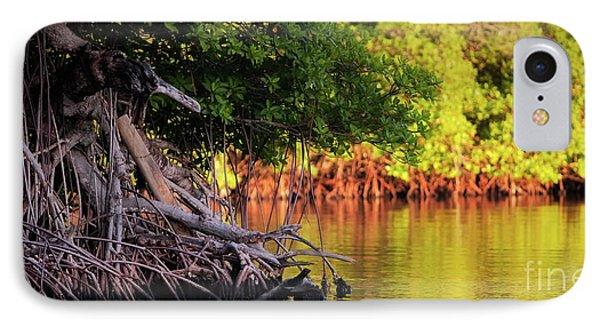 Mangroves Of Roatan Phone Case by Doug Sturgess