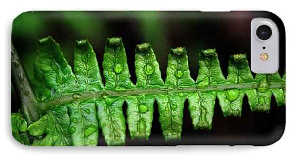 Manoa Fern Phone Case by Jennifer Bright
