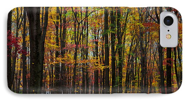 Many Colors Of Autumn IPhone Case by April Reppucci