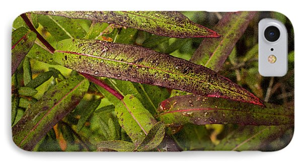 Many Colors Of Fall Fireweed IPhone Case