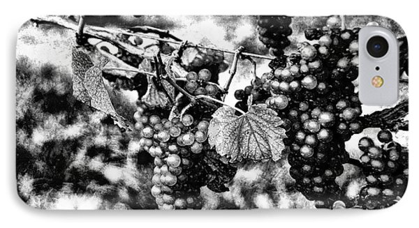 Many Grapes IPhone Case by Rick Bragan