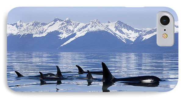 Many Orca Whales IPhone Case by John Hyde - Printscapes