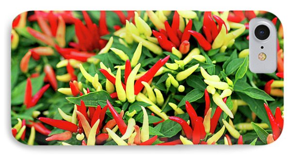 Many Peppers IPhone Case by Todd Klassy