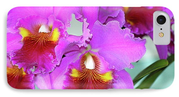 IPhone Case featuring the photograph Many Purple Orchids by Lehua Pekelo-Stearns