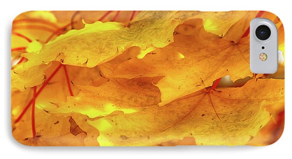 IPhone Case featuring the photograph Maple Blaze by Marie Leslie