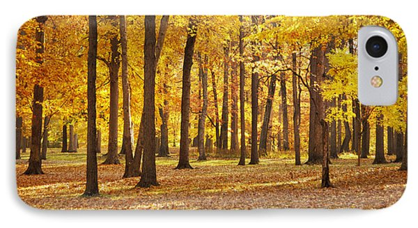 IPhone Case featuring the photograph Maple Glory by Francesa Miller