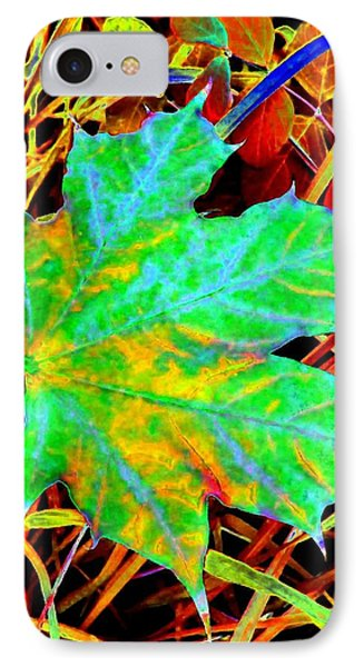 Maple Mania 21 Phone Case by Will Borden